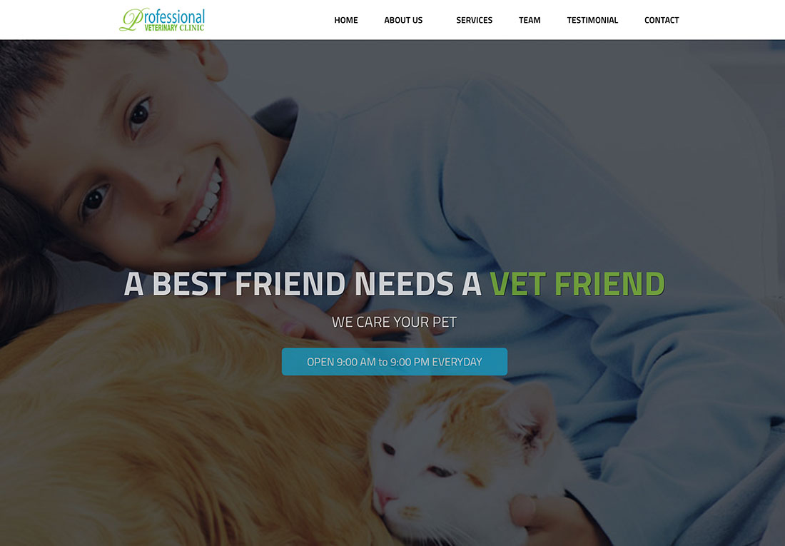 Professional Veterinary Clinic